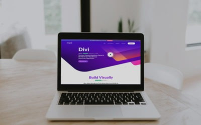 Why Web Developers should use Divi